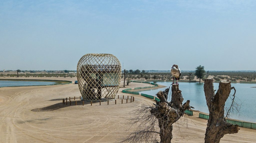 The Cocoon – Bird Observation Tower